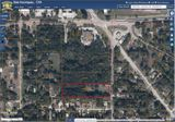 2.43 Acres Bell Shoals / Lumsden / Lithia Pinecrest